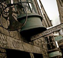 Public Conveniences by Scott Smith