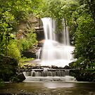 Full View of Boren Mill Shoals Falls! by vasu