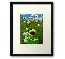 Cottongrass Bog Meadow Flower White Nature Framed Print