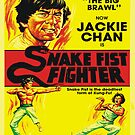 Snake Fist Fighter by BUB THE ZOMBIE