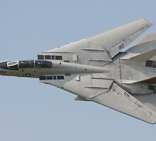 F14a Tomcat by mooneyes