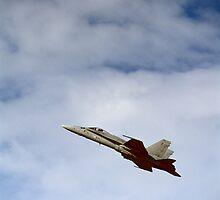 McDonnell Douglas F-18 Hornet, Leeuwarden 2011 by Michel Meijer