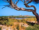 Lighthouse on Rottnest Island by Yukondick