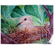 Nesting... Poster