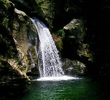 Squeezing out of the rocks - Bingham Falls, Stowe, VT by PASpencer