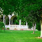 National garden(Nicosia) by Yannis-Tsif