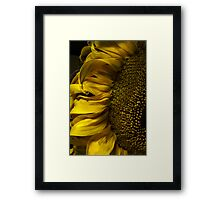 Closer to the Sun Framed Print