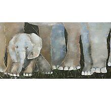 Baby Elephant 2 Photographic Print
