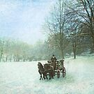 Winter drive by Lyn Evans