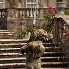 A Little water.... by Finbarr Reilly