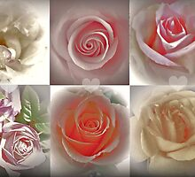 Magical Roses by Art-Motiva