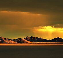 Storm Light by Jill Fisher
