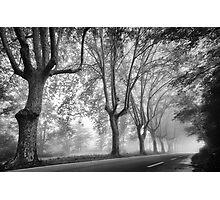 Along a Misty Lane Photographic Print