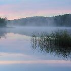 Dawn at Lake Seliger by Irina Chuckowree
