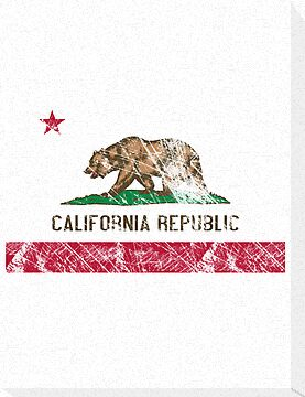 vintage flag of California by nadil