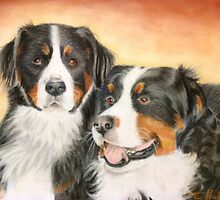 Bernese Mountain Dogs by Tina Hickman