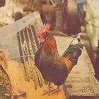 Junkyard Rooster by Shannon Kerr