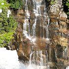 Waterfall on Mount Rainier by Kelly Walker
