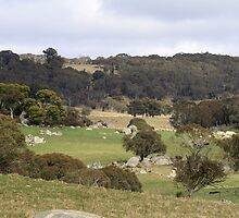 Australian High Country Valley by Kelly Walker