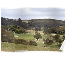 Australian High Country Valley Poster