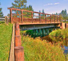 Bridge at Buck Lake by Keri Harrish