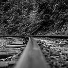 On the rails by LadyFran