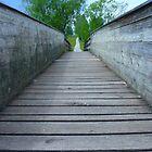 Bridge Web Away by justforyou