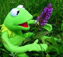 Orchid Getuepfeltes Frog Kermit Green by justforyou