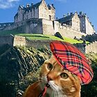 Celtic Meows by Kristie Theobald
