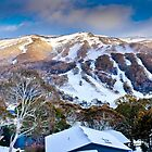 Thredbo Panorama II by Damian Gobbo