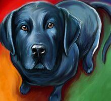 Black Labrador  by davidkyte