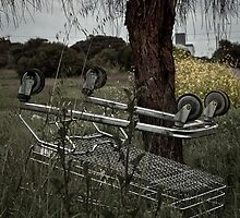 Dead Cart by sedge808