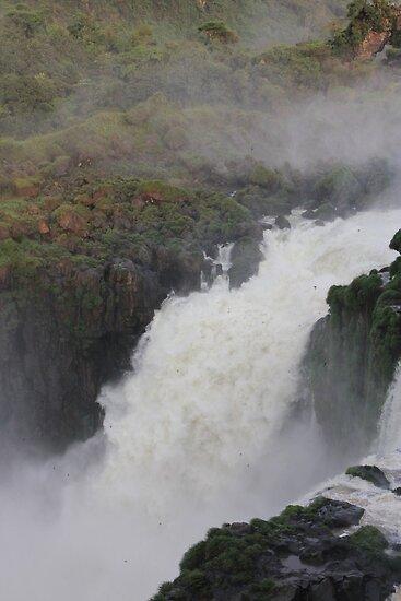 Iguassu Falls by maashu