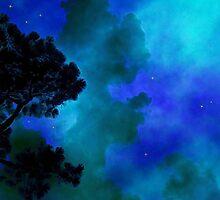 Star Gazing by George  Link