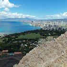 Waikiki from the Top of Diamond Head by Adam Kuehl
