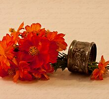 Orange Zinnias by Sandra Foster