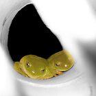 Green Tree Frogs hiding by Kelly Walker