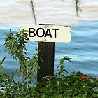 Boat This Way by Cynthia48