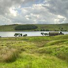 Barn on the Tarn Panorama III by TheWalkerTouch