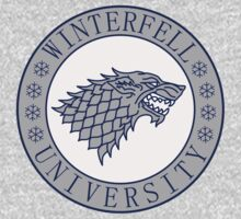 University of Winterfell by karlangas