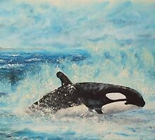 ORCA KILLER WHALE by Stan  Brookfield