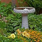 Bird Bath Garden Scene  by Sandra Foster