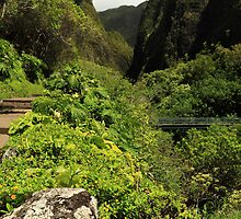 A Bridge To The Iao Needle by James Eddy