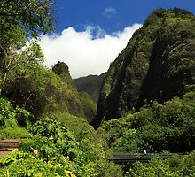 Iao Needle - Iao Valley by James Eddy
