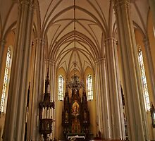 Name of Mary Church, Novi Sad, Serbia, interior by Margaret  Hyde