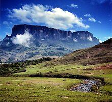 Mount Kukenan and Tek River. Venezuela by adalbertop