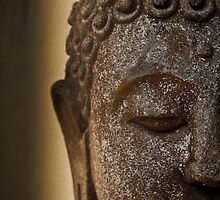 Buddha Head by Kerrod Sulter