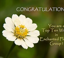 Top Ten Banner by lensbaby