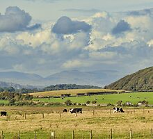 Rural Landscape by Colin Metcalf