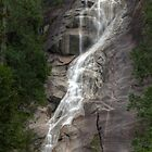 Shannon Falls British Columbia by Paul Duckett